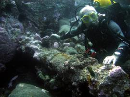 Gran Canaria has several dive sites with scattered archeology - This Canon has become heavily encrusted