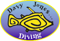 Diving in Gran Canaria with scuba diving centre Davy Jones Diving