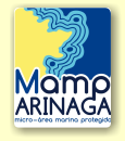 Micro area marine protected in Arinaga for scuba divers