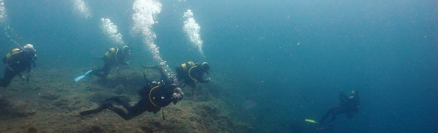 Canary islands dive into the Arinaga Marine Reserve